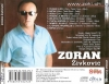 Zoran Zivkovic 2007 Back 1